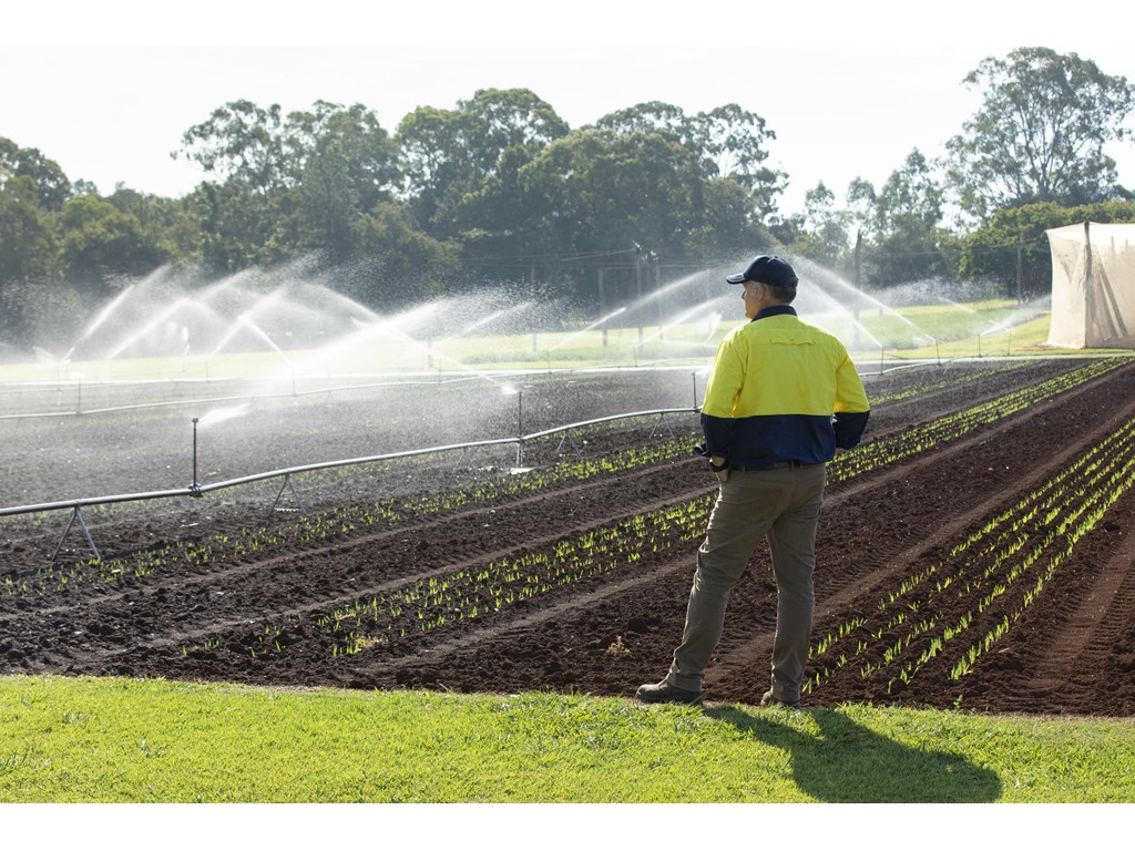 More water on the table to support Scenic Rim farmers