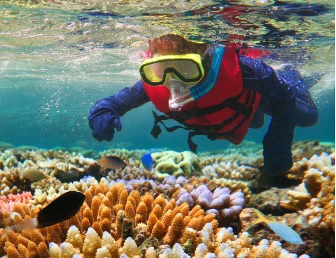 Reef Program makes a splash with schools