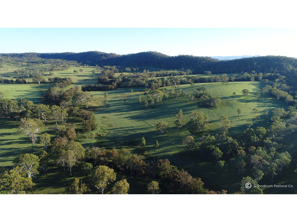 Landmark carbon farming project to create jobs and environmental benefits across Queensland