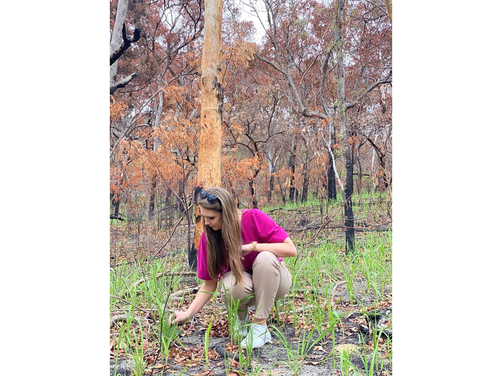 Queensland Environment Minister Meaghan Scanlon inspects regrowth in fire affected areas of K'gari.