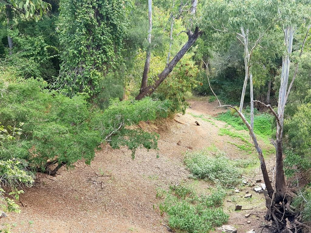 CQ backs changing creek name